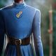 Brienne's Formal Tunic