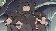 S1e6 multi-bear