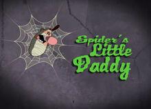 Spider's Little Daddy