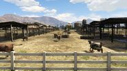 Grapeseed Cow Farm GTAV-Stock