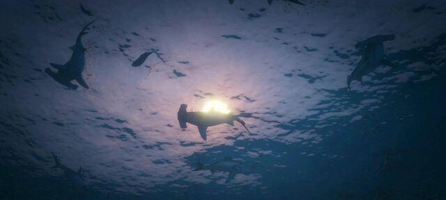 File:Sharks-GTAV-nextgen.jpg