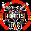 File:Black Hornets Emblem.png
