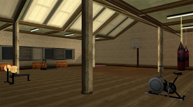 File:MaddDogg'sCrib-GTASA-gym.jpg