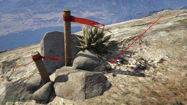 File:Peyote Plants GTAVe 03 Mt Chiliad View.jpg