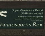 Libertonian-TLAD-FossilTyrannosaurusPlaque
