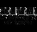 Skiver Construction Corporation
