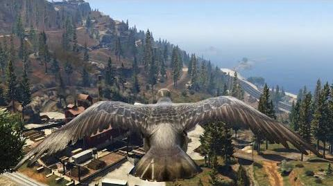 Play As A Pigeon In GTA 5 PS4 (Visiting Fort Zancudo) HD