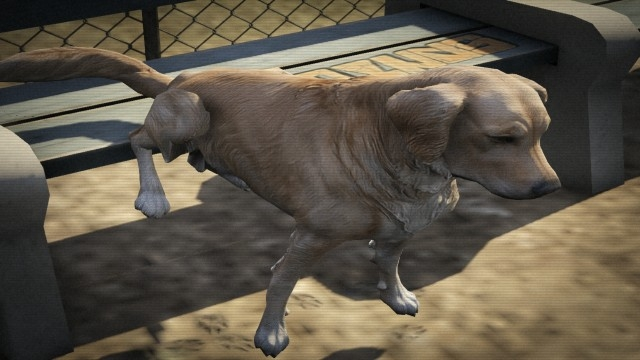 File:Dog-GTAV-piss.jpg