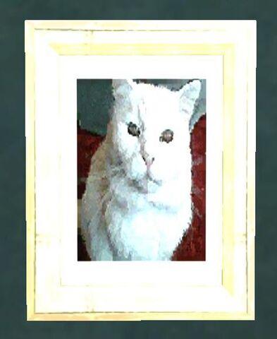 File:Johnson cat.jpg