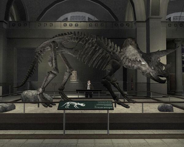 File:Libertonian-TLAD-FossilTriceratops.jpg