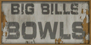 BigBillsBowls-GTAVC-logo