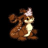 Chocolate Zafara