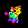 Kau rainbow