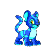 Electric Kougra