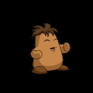Chia brown