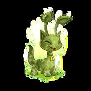 Swamp GasAisha