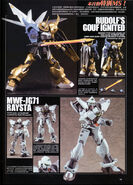 Gundam Seed Astray Masters (241)