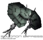 Solomon Express 16