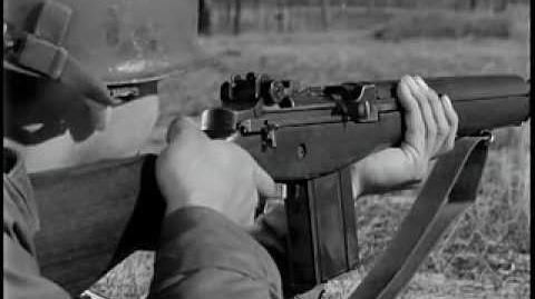 The M14 Rifle