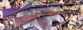 Springfield Model 1861 vs Pattern 1861 Enfield
