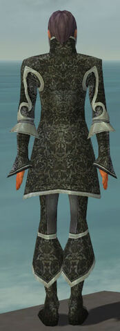 File:Elementalist Elite Canthan Armor M gray back.jpg
