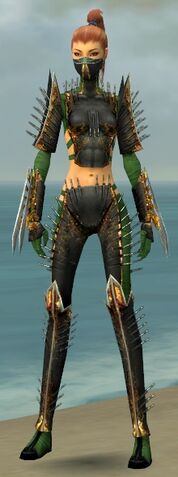 File:Assassin Exotic Armor F dyed front.jpg