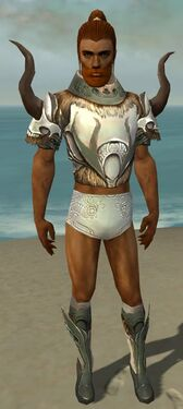 Paragon Norn Armor M gray chest feet front