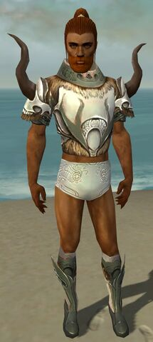 File:Paragon Norn Armor M gray chest feet front.jpg
