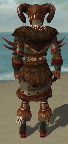 File:Ritualist Norn Armor M gray back.jpg