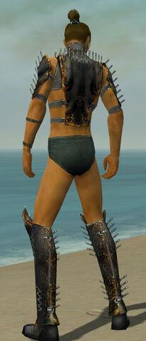 File:Assassin Exotic Armor M gray chest feet back.jpg
