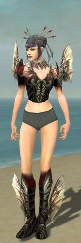 File:Necromancer Primeval Armor F gray chest feet front.jpg