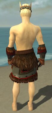 Ritualist Norn Armor M gray arms legs back