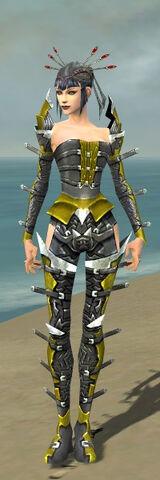 File:Necromancer Profane Armor F dyed front.jpg