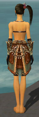 Ritualist Imperial Armor F gray arms legs back