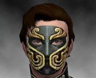 File:Mesmer Asuran Armor M gray head front.jpg