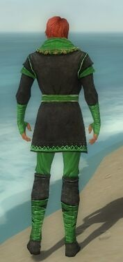 Mesmer Luxon Armor M dyed back