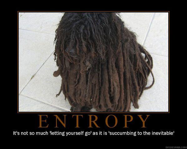 File:Entropy motivator-5070.jpg