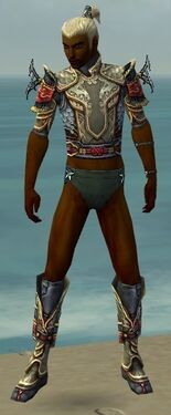 Assassin Monument Armor M gray chest feet front