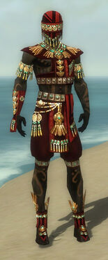 Ritualist Elite Luxon Armor M dyed front