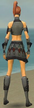 Assassin Elite Canthan Armor F gray back