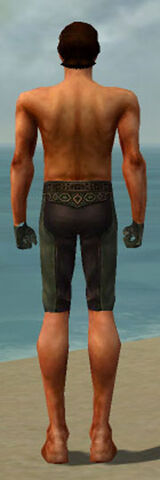 File:Mesmer Ancient Armor M gray arms legs back.jpg