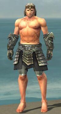 Warrior Elite Templar Armor M gray arms legs front
