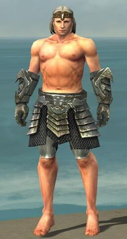 File:Warrior Elite Templar Armor M gray arms legs front.jpg