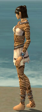 Monk Labyrinthine Armor F dyed side