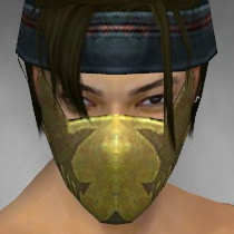 File:Assassin Seitung Armor M dyed head front.jpg
