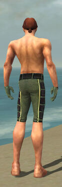 Mesmer Canthan Armor M gray arms legs back