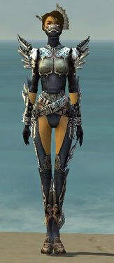 Assassin Asuran Armor F gray front