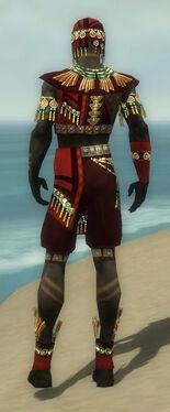 Ritualist Elite Luxon Armor M dyed back