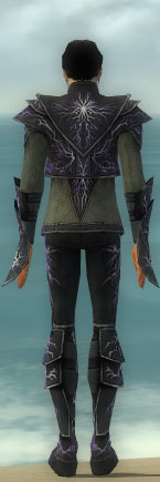 File:Elementalist Elite Stormforged Armor M gray back.jpg