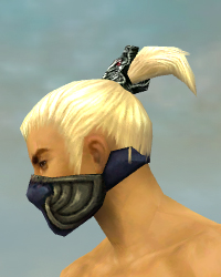 File:Assassin Norn Armor M gray head side.jpg